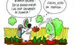 Las Falsas Soluciones - Organismos Genéticamente Modificados (OGM)